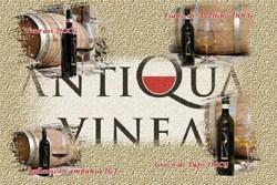 Antiqua Vinea