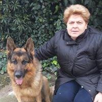 Mariarosa D'errico