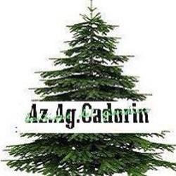 Az Ag Cadorin