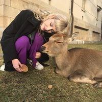 Brooklyn Deer