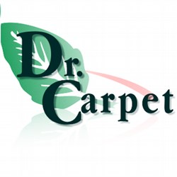 Dr.  Carpet
