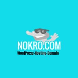 Mr.  Nokro