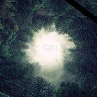 Gin Hunter