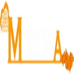 Mozora info solutions