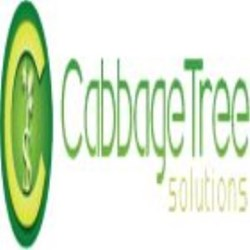 Cabbage Tree Solutions