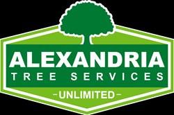 Alexandria Trees & Stumps