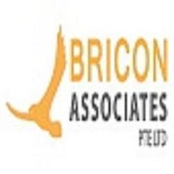 BriconAssociates  Pte Ltd