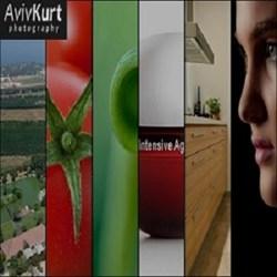 Aviv Kurt