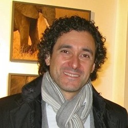 Cristian Stefanini