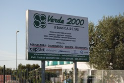 Verde 2000 di Scisci C.A. & C. sas
