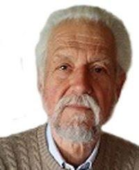 Renzo Ricotti