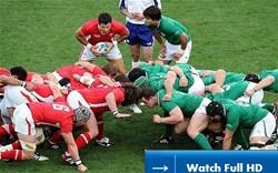 Wales vs Ireland walesvireland
