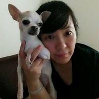 Yulei Chen
