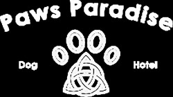 Paws Paradise doggrooming