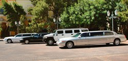 Limos Of The Woodlands