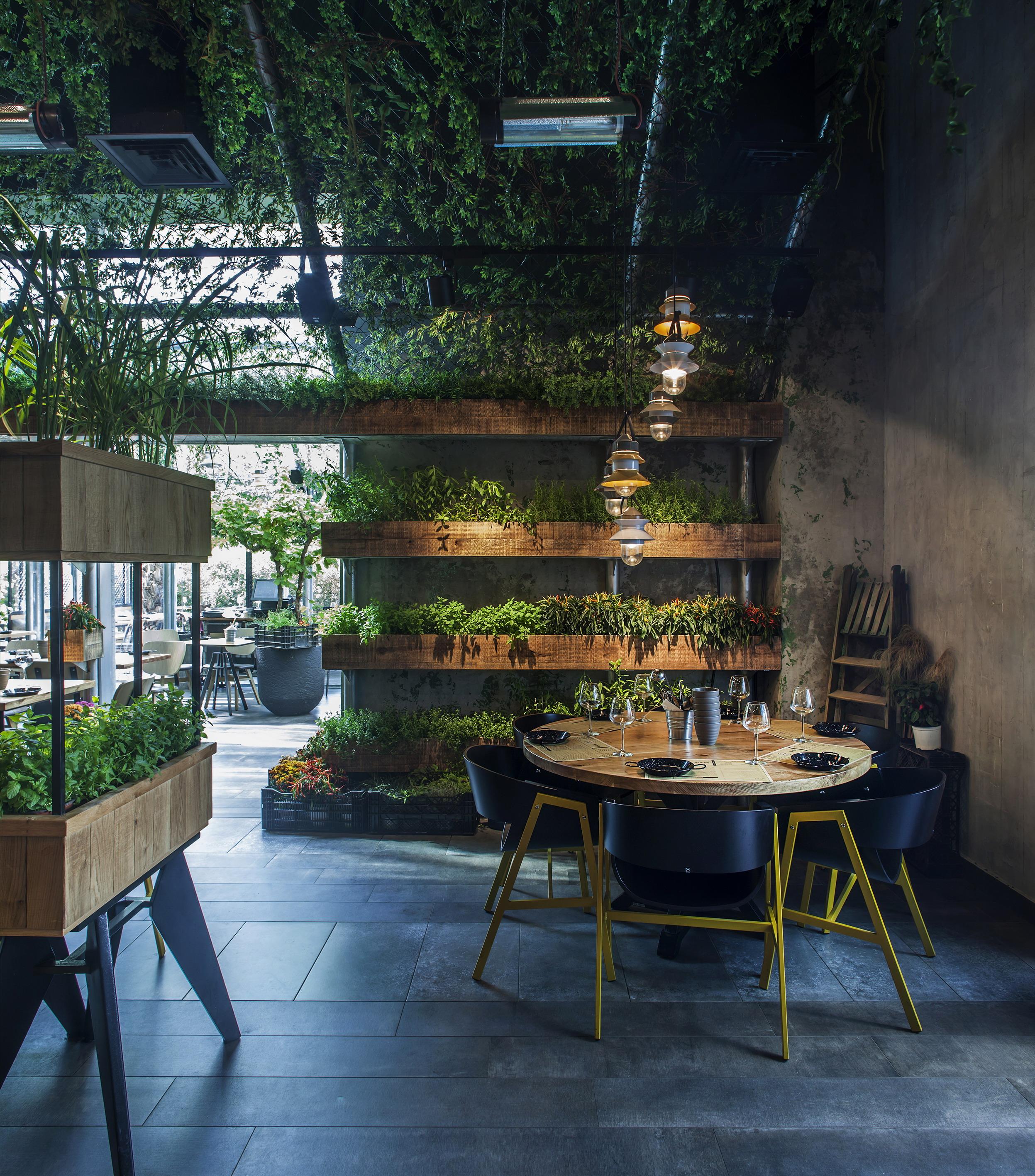 Segev Kitchen Garden   Yaron Tal