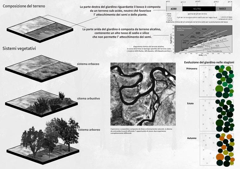 Vis Roboris: l'albero sinonimo di forza | Nicola Centineo