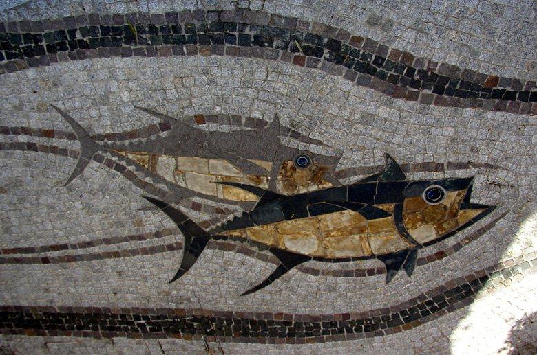 """"""" catena alimentare dei pesci """""""