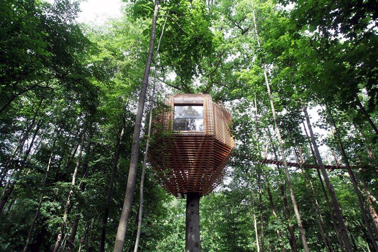 Origin Tree House