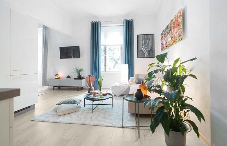 Apartment in Vinhorady