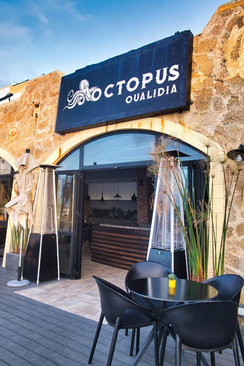 Octopus Oualidia