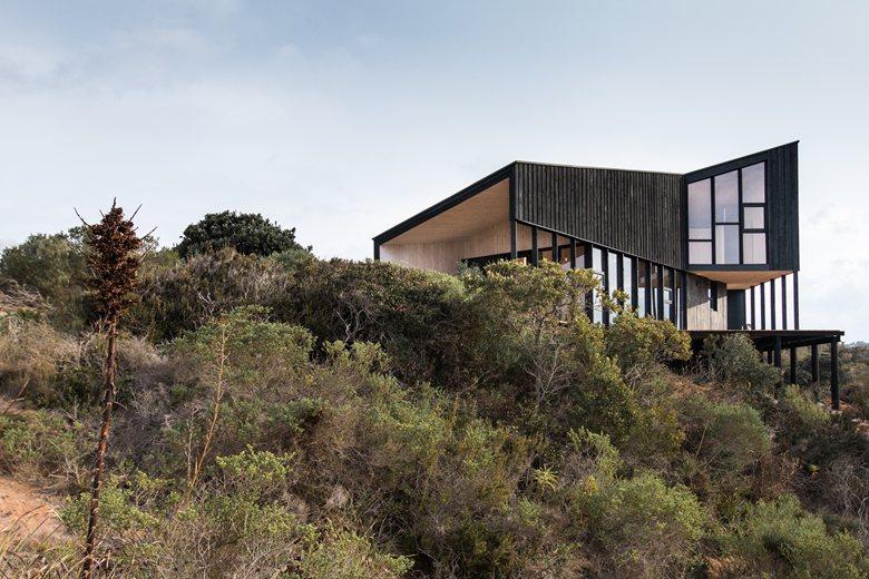Stranded House
