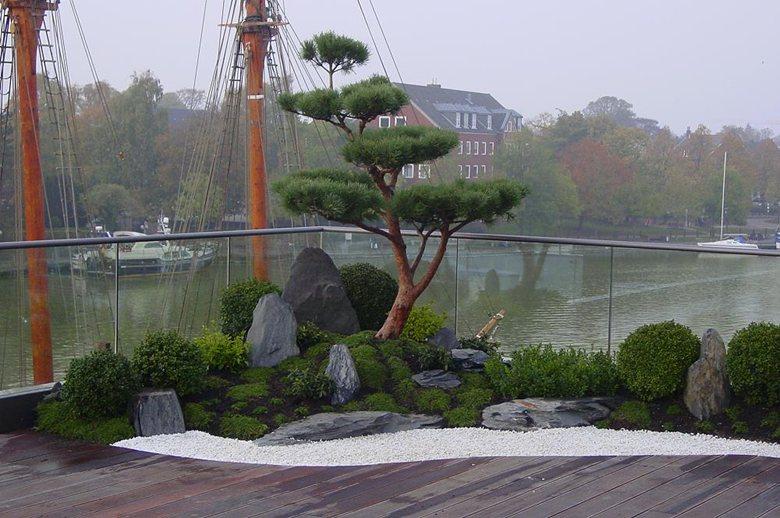 Über den Dächern von Leer - Roof garden in japanese style