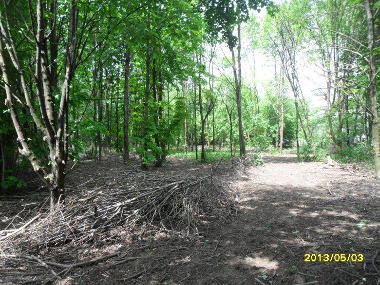 Relazione Tecnica di carattere Agronomico\ Forestale relativa al Bando Misure Forestali – Progetto Misura 8.a.2. OASI NATURALE URBANA PARCO DELLE NOCI