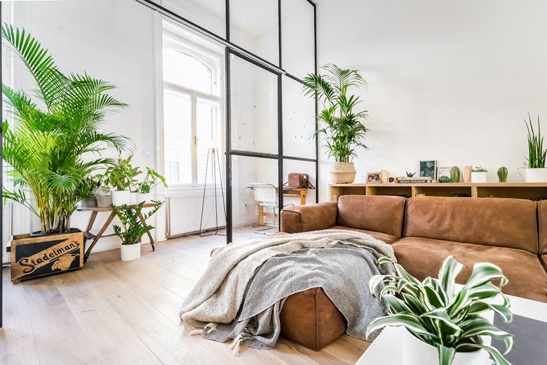 Private apartment in 8th district | Snezana Gikovski