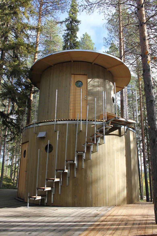 The Tree Sauna
