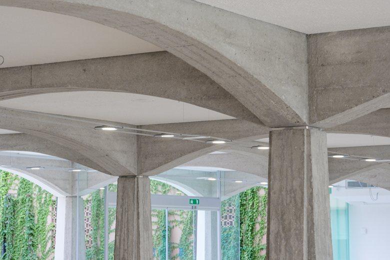 Concrete Woods