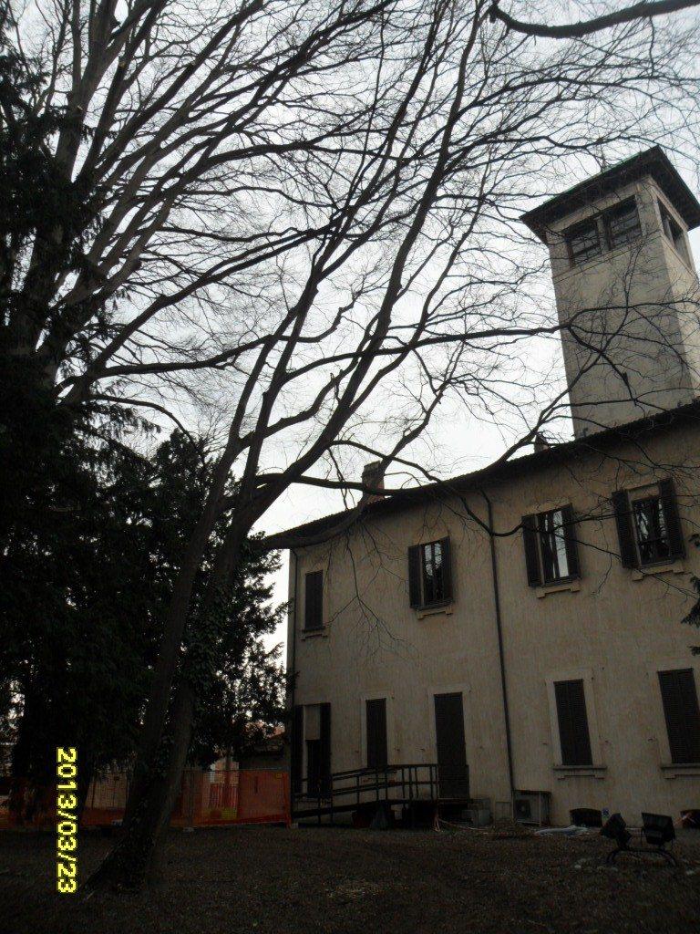 Valutazione di stabilità degli alberi del parco di Villa Castiglioni sede del Parco Lombardo della Valle del Ticino in Magenta