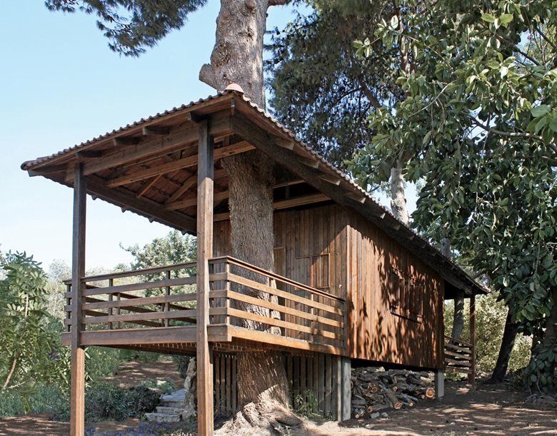 Two-Tree House