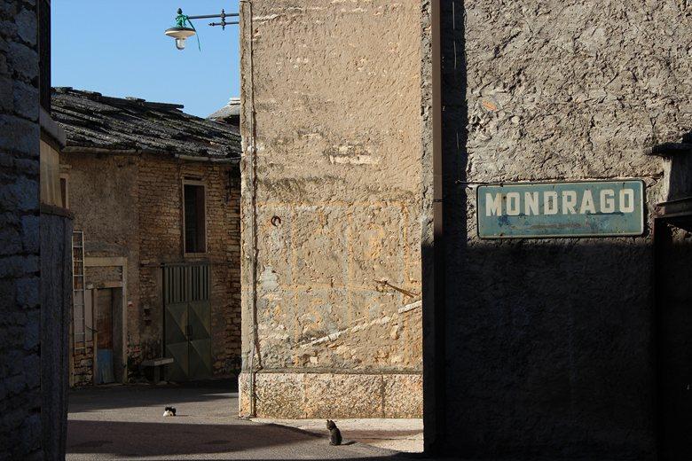 B&B Mondrago 13