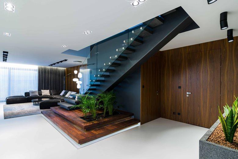 Contrast Based Spacious Interior