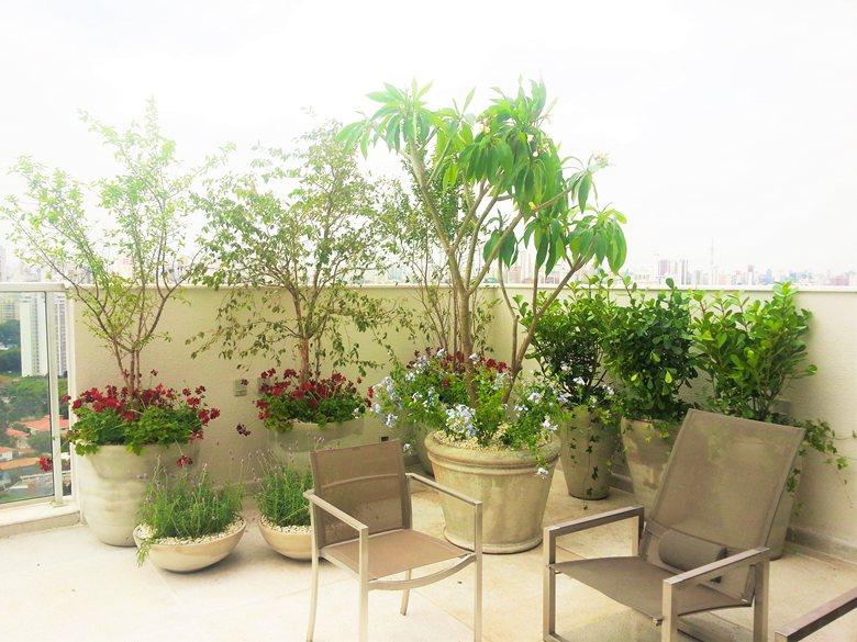 Jardim nas alturas!! Lavandas, gerânios, frutíferas e Jasmim...Verdejando esta varanda.