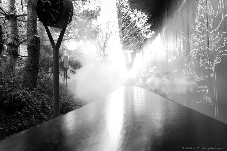 AUSTRIAN PAVILLON | Milan Expo 2015 |  team.breathe.austria