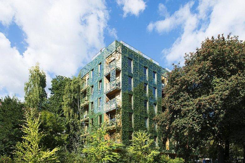 D36 Green House