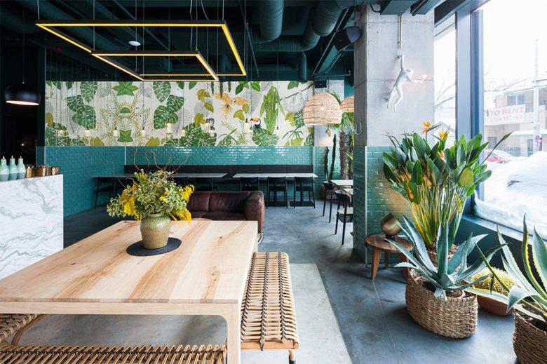 Kane World Food Studio Restaurant & Bar