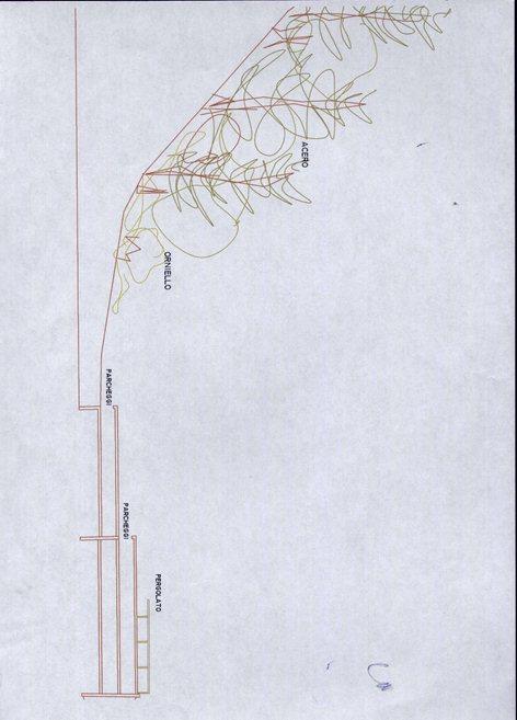 Sistemazione area sottostante Cava del Cernicchiara