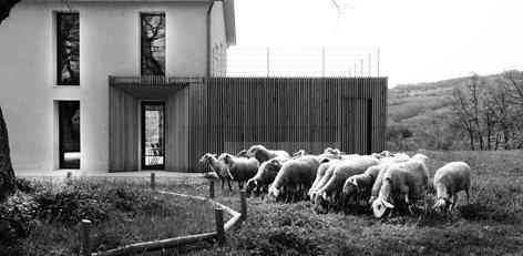 Azienda agricola Carmasciando