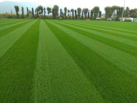 Campo da calcio in erba naturale a Bassano del Grappa