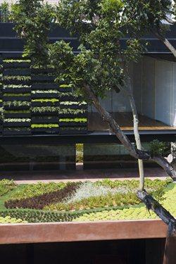The Maximum Garden House