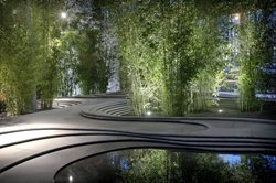 Naturescape Urban Stories