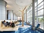 Restructuration des Bibliothèques Universitaires