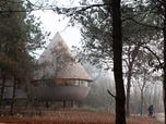 The Mushroom - a wood house in the forest