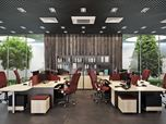 Office Interior Design in Natural Materials