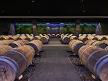 cantina vinicola_Davinum