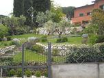 Giardino a Frascati (Roma)