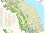 Carta della Vegetazione della Regione Marche